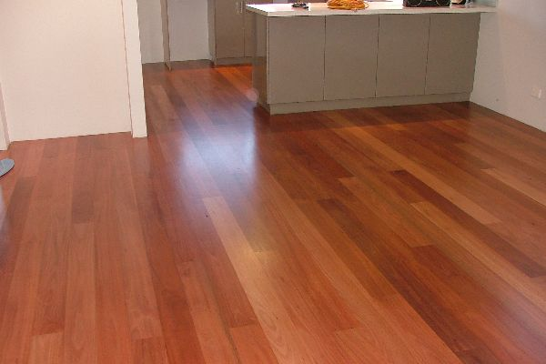Other Species Of Timber For Flooring Bosch Timber Floors