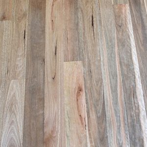 Solid-Timber-Flooring-Spotted-Gum-80w-feature-raw