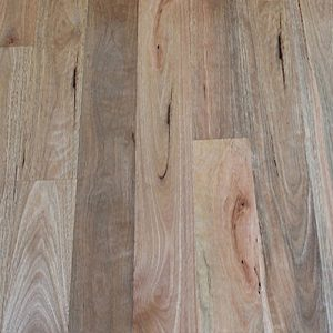 Solid-Timber-Flooring-Spotted-Gum-wide-feature-raw